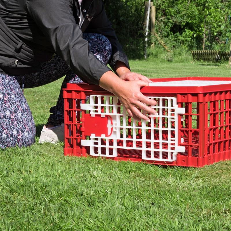 560706-gefluegeltransportbox-huehner-transportbox-mit-praktischer-vordertuer.jpg