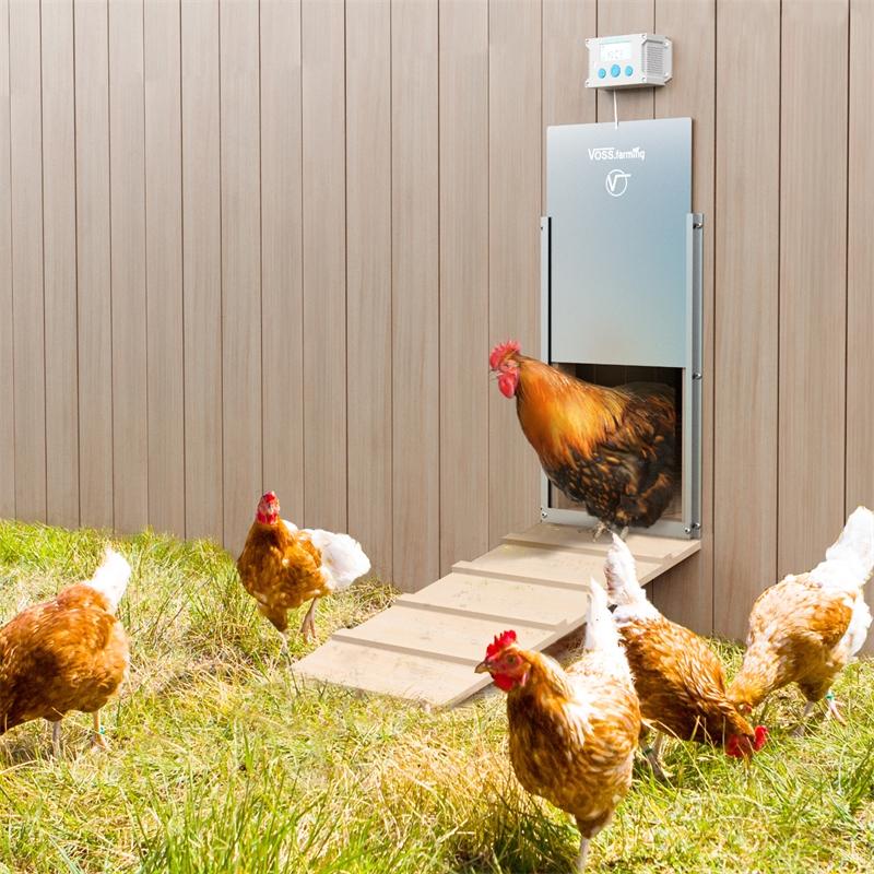 561810-voss-farming-automatische-huehnertuer-tueroeffer-praxisbild.jpg