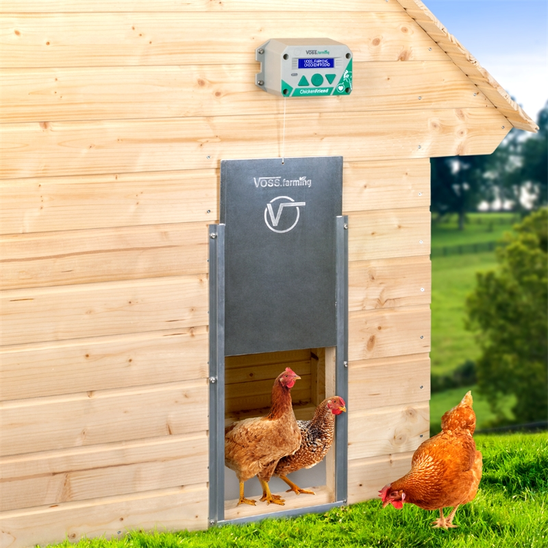 561820-voss-farming-chickenfirend-elektrische-huehnerklappe.jpg