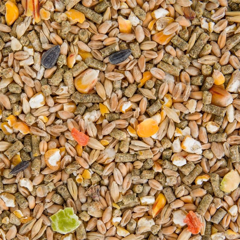 563600-deuka-freiland-mix-koernermix-huehnerfutter-gefluegelvollnahrung-gentechnikfrei-10kg.jpg