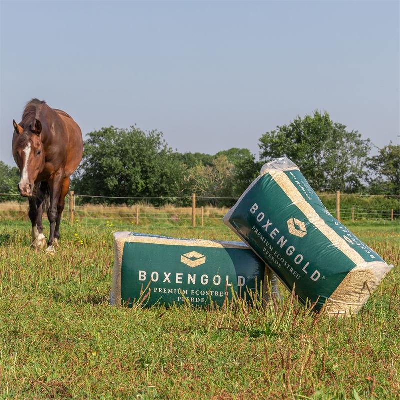 569905-boxengold-einstreu-premium-optimal-fuer-pferde-mit-atemwegserkrankungen.jpg