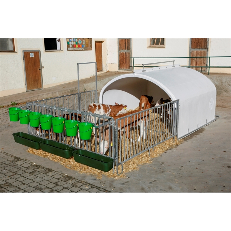 580130-01-calfhouse-premium-xxl-großraumhuette-fuer-7-kaelber-mit-umzaeunung.jpg