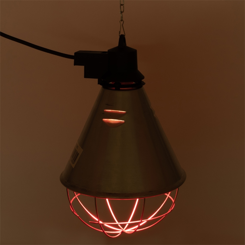 80322-80323-infrarot-sparlampe-waermelampe.jpg