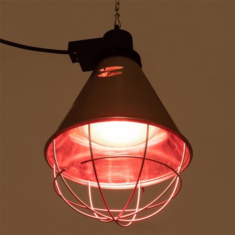 80322-80323-infrarot-sparlampe-warmes-licht.jpg