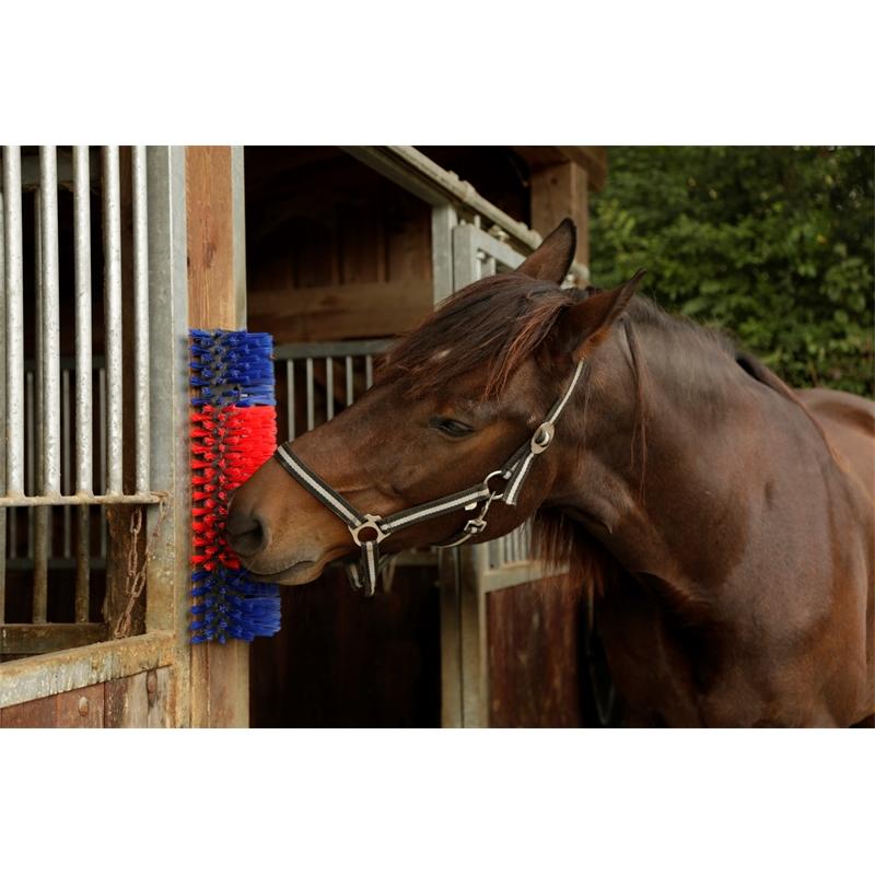 86170-4-kerbl-halbrunde-kratzbuerste-5cm-lange-borsten-fuer-pferde-ponys.jpg