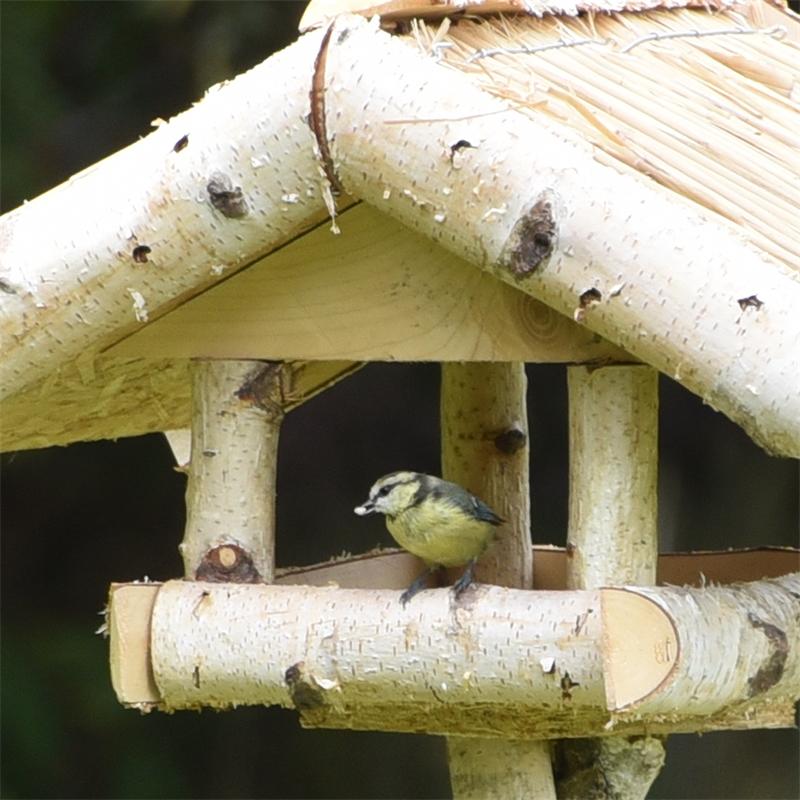 930430-voss-garden-vogelfutter-haus-holm-fuer-den-garten.jpg