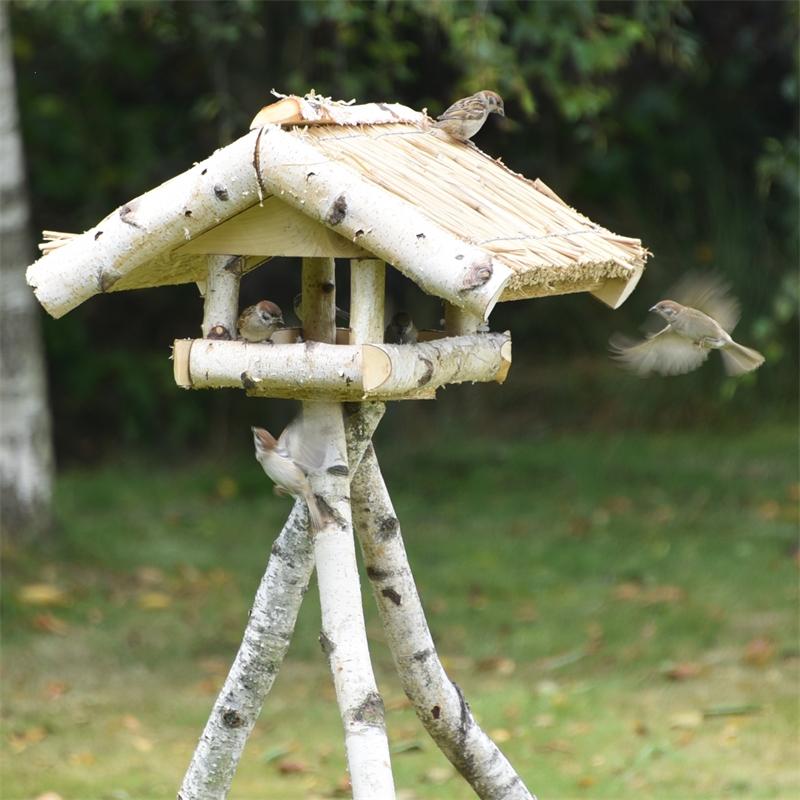 930430-voss-garden-vogelfutterhaus-holm-vogelbesuch.jpg