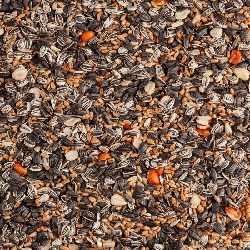 930820-voss-garden-wildvogel-ganzjahresfutter-mit-sonnenblumenkernen-und-erdnuessen.jpg