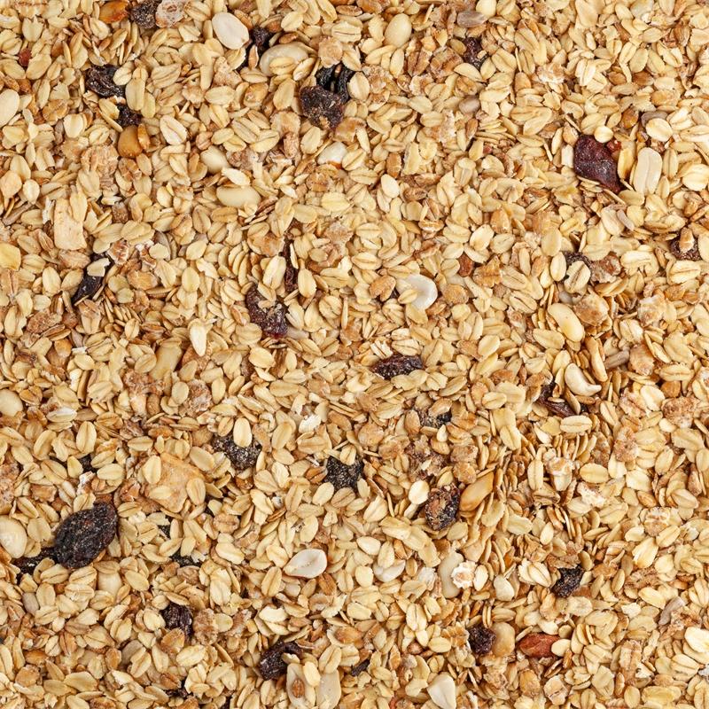 930824-voss-garden-wildvogel-fettfutter-mix-mit-rosinen-und-nuessen.jpg