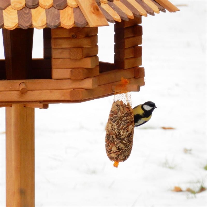 Voegelhaus-aus-Holz-gross-fuer-den-Garten-guenstig-Schnee.jpg