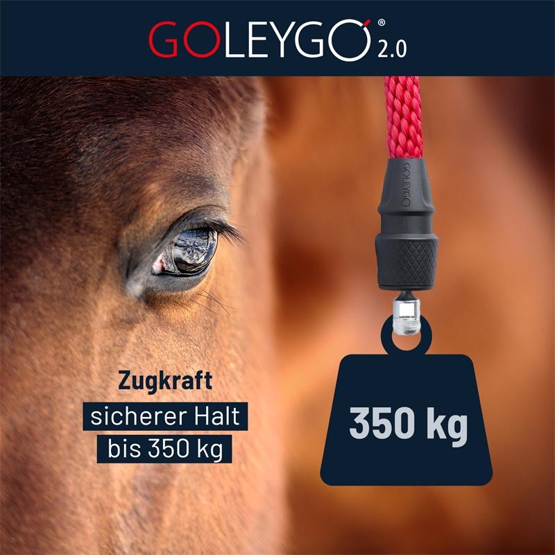 goleygo-2.0-zugkraft-sicherer-halt-bis-350kg-halfter-strick-adapter-pin.jpg