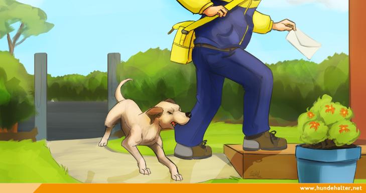 Hund beißt Postboten