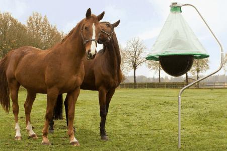 Bremsenfalle Holland H-Trap Pferde schuetzen Bremsenstich