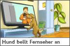 Hundehalter.net Ratgeber - Hund bellt Fernseher an