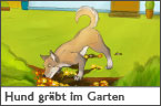 Hundehalter.net Ratgeber - Hund gräbt im Garten