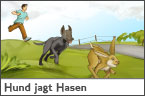 Hundehalter.net Ratgeber - Hund jagt Hasen