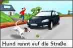 Hundehalter.net Ratgeber - Hund rennt auf die Straße
