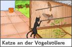Hundehalter.net Ratgeber - Katze am Vogelk�fig