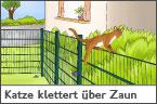 Hundehalter.net Ratgeber - Katze klettert über den Zaun