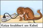 Hundehalter.net Ratgeber - Katze knabbert am Kabel