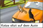 Hundehalter.net Ratgeber - Katze sitzt auf dem Auto