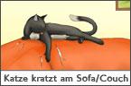 Hundehalter.net Ratgeber - Katze kratzt am Sofa oder Couch