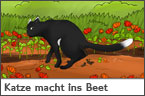 Hundehalter.net Ratgeber - Katze macht ins Blumenbeet