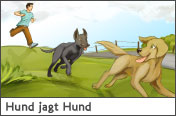 Hundehalter.net Ratgeber - Hund jagt Hund