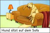 Hundehalter.net Ratgeber - Hund sitzt auf dem Sofa