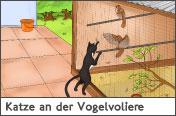 Hundehalter.net Ratgeber - Katze am Vogelkäfig