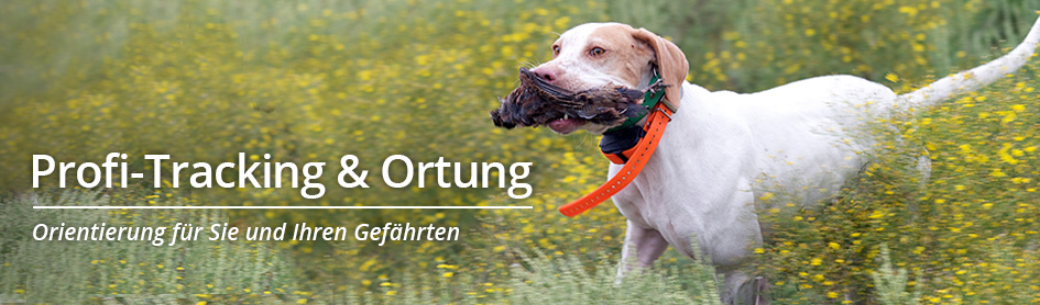 Hundeortung
