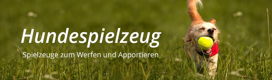 Apportieren & Werfen